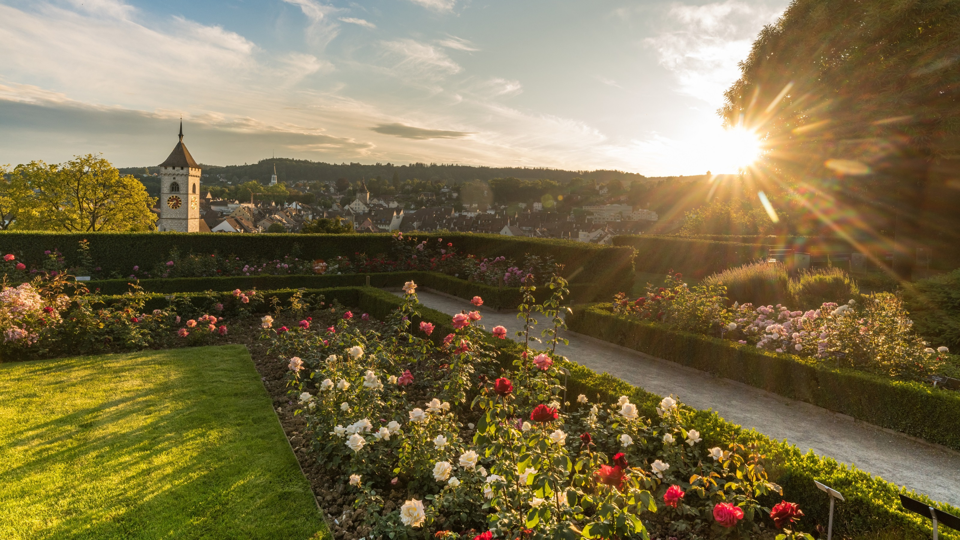 Munot Rose Garden   Switzerland Tourism